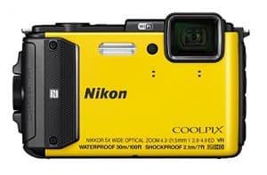 Nikon 130