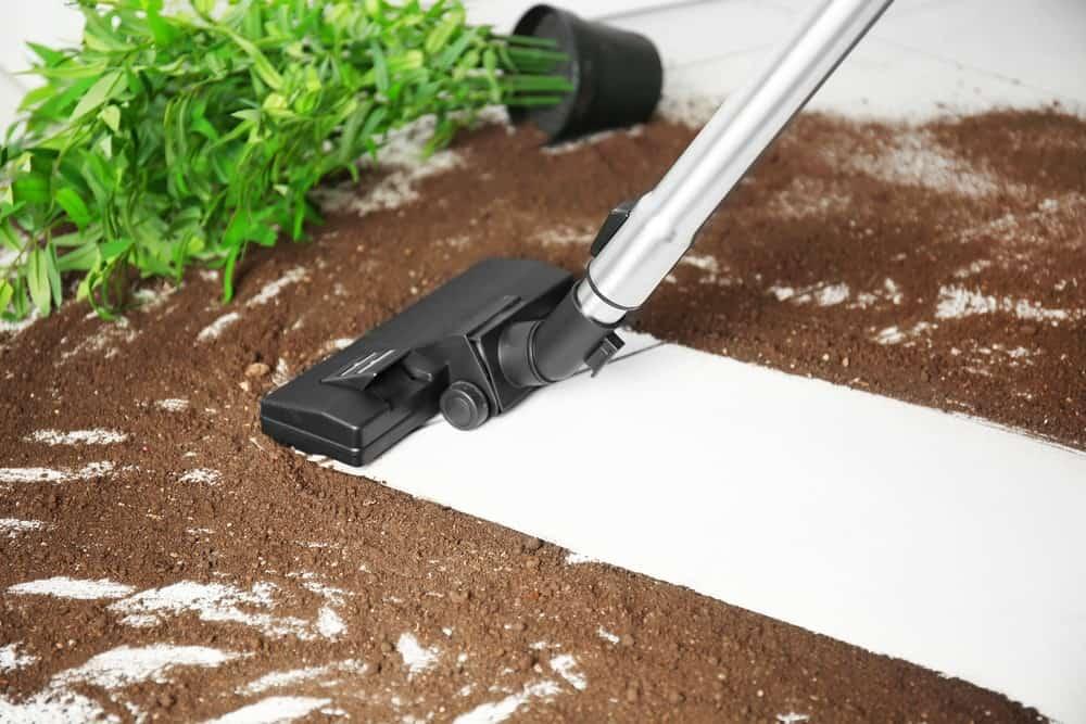 Best Vacuums for Tile Floors