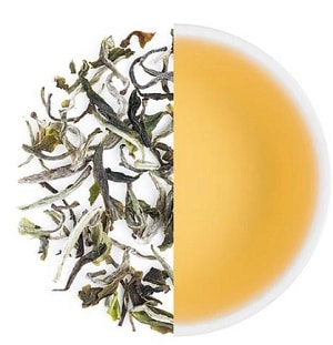Teabox Darjeeling Special Spring White Tea – best affordable high-quality loose-leaf white tea