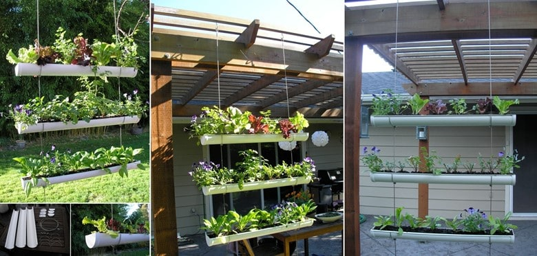 Rain Gutter Vertical Garden Screen