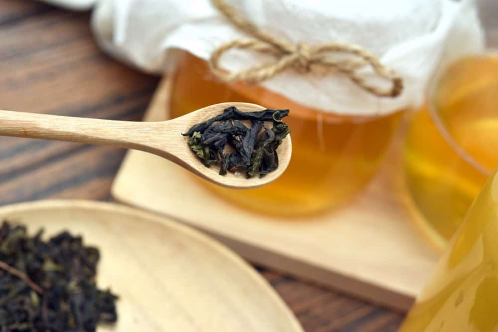 Best Tea for Kombucha